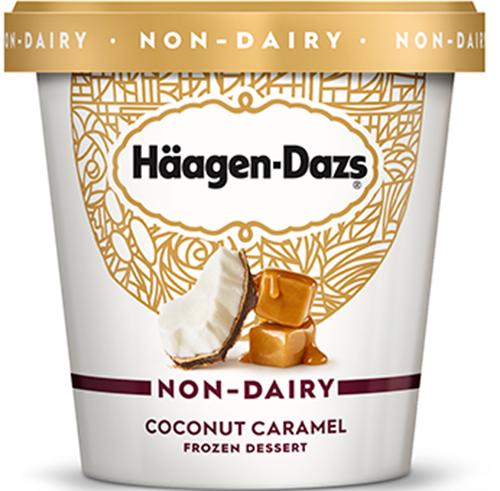 Haagen Dazs Non-Dairy Ice Cream
